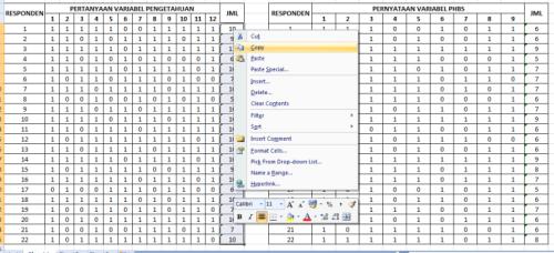 data tabulasi excel Pengetahuan x PHBS